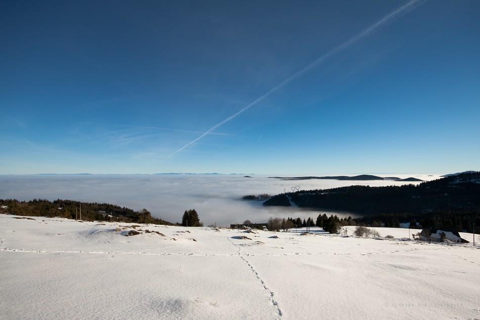Vosges : 2010